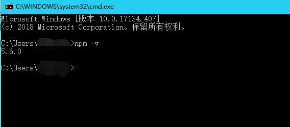 检查npm版本