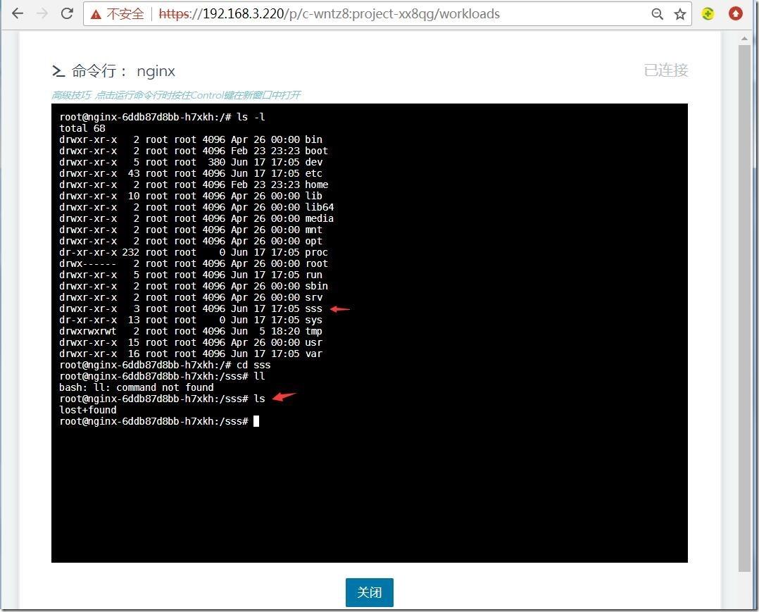 图14-工作负载nginx容器中的目录sss