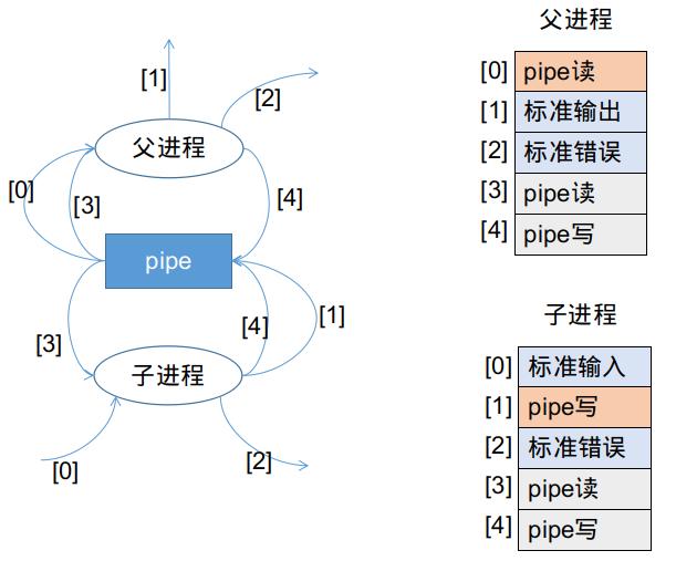 两个函数执行完毕后的文件描述符表状态