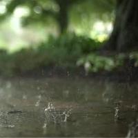 喜欢下雨天的人