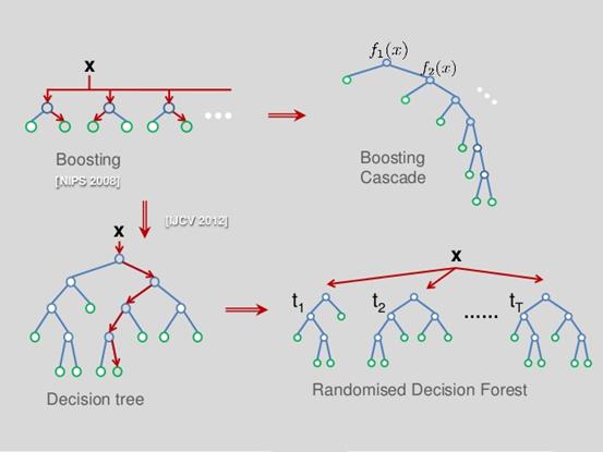 决策树模型浅尝辄止