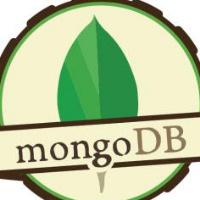 杨亚洲-专注mongodb及高性能中间件