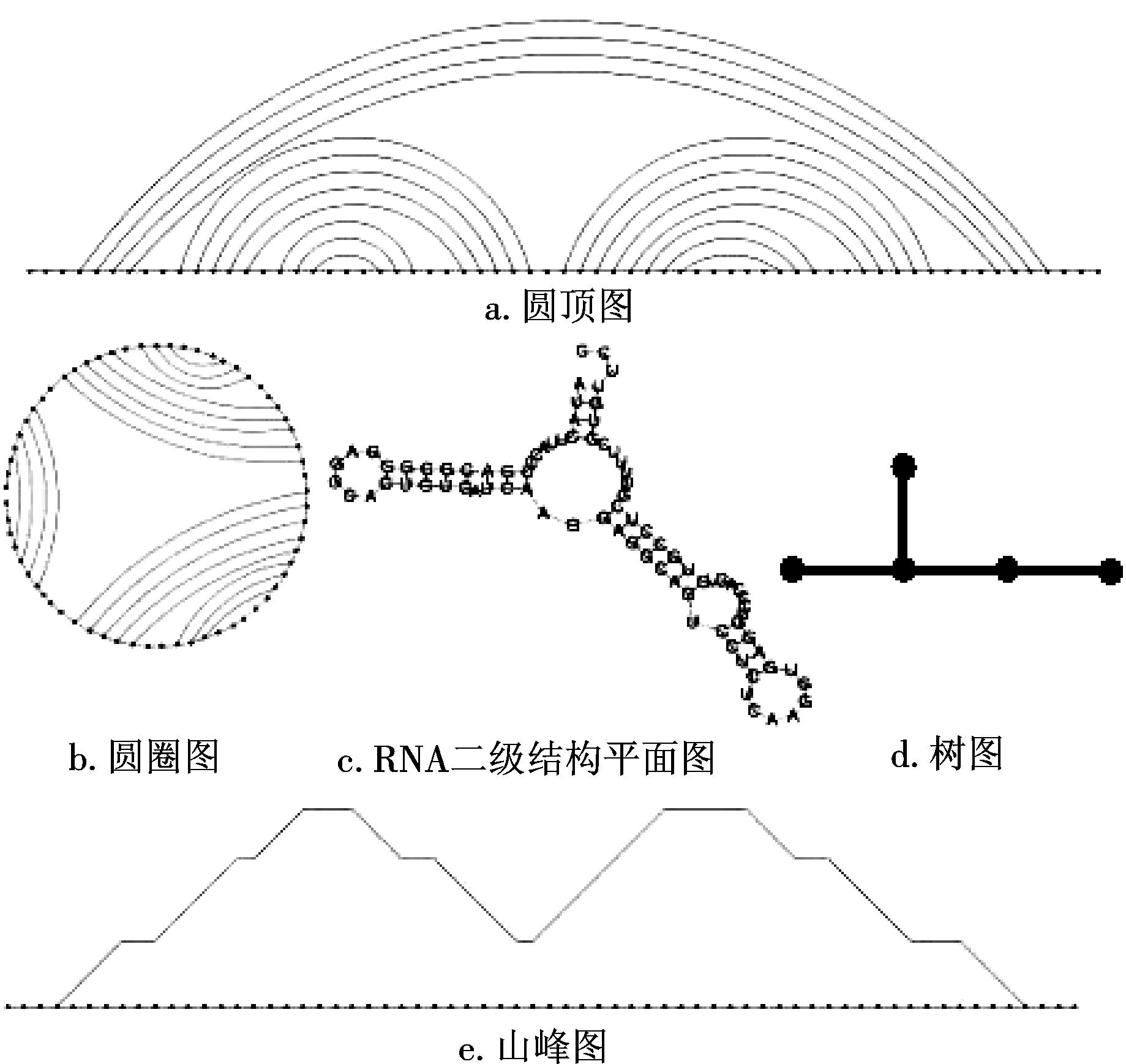 [1]吴建英,王淑琴.RNA二级结构点括号图与CT文件表示法的相互转换算法研究[J].天津师范大学学报(自然科学版),2012,32(04):32-36.