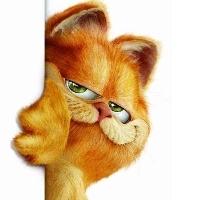 开源中国首席大脸猫猫