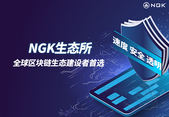 探讨去中心化交易平台NGKEX的长期价值