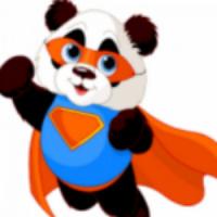 没有功夫的熊猫