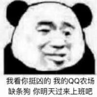 daxiongdi