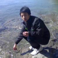 wells杨